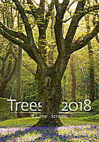 Trees Wall Calendar 2018 by Helma