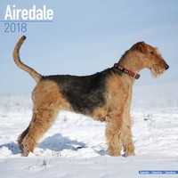Airedale Wall Calendar 2018 by Avonside