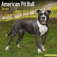 American Pit Bull Terrier Wall Calendar 2018 by Avonside