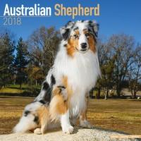 Australian Shepherd Wall Calendar 2018 by Avonside