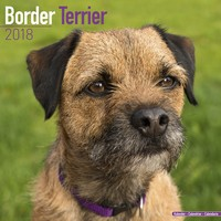 Border Terrier Wall Calendar 2018 by Avonside