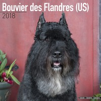 Bouvier Des Flandres (US) Wall Calendar 2018 by Avonside