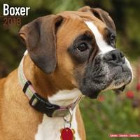 Boxer (Euro) Wall Calendar 2018 by Avonside
