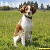 Brittany Wall Calendar 2018 by Avonside
