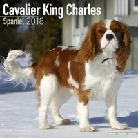 Cavalier King Charles Wall Calendar 2018 by Avonside