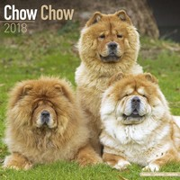 Chow Chow Wall Calendar 2018 by Avonside