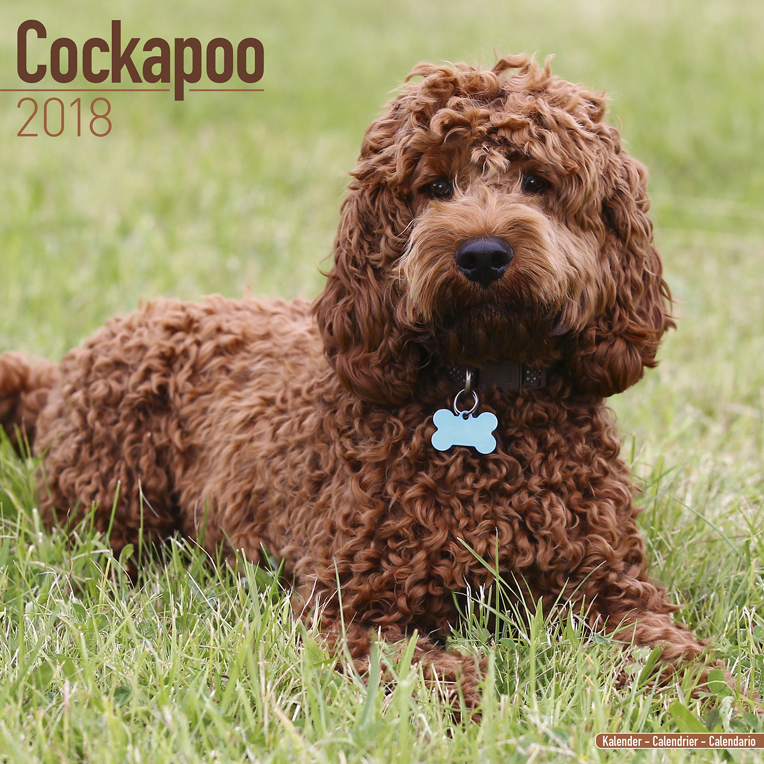 Dog Wall Art Cockapoo Calendar 2018 Pet Prints Inc