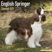 English Springer Spaniel (US) Wall Calendar 2018 by Avonside