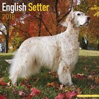 English Setter Wall Calendar 2018 by Avonside