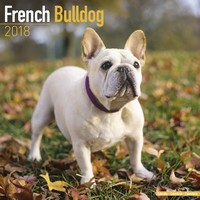 French Bulldog Wall Calendar 2018 by Avonside
