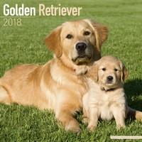 Golden Retriever Wall Calendar 2018 by Avonside