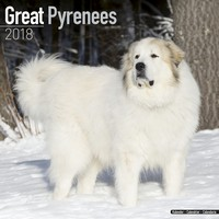 Great Pyrenees Wall Calendar 2018 by Avonside