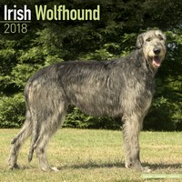 Irish Wolfhound Wall Calendar 2018 by Avonside