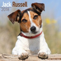 Jack Russell  Wall Calendar 2018 by Avonside