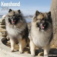 Keeshond Wall Calendar 2018 by Avonside