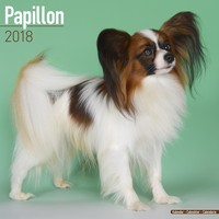 Papillon Wall Calendar 2018 by Avonside