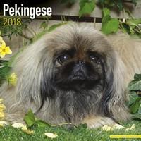 Pekingese Wall Calendar 2018 by Avonside