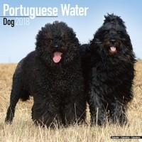 Portuguese Waterdog Wall Calendar 2018 by Avonside