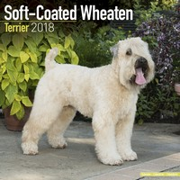 Softcoat Wheaten Terrier Wall Calendar 2018 by Avonside