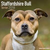 Staffordshire Bull Terrier Wall Calendar 2018 by Avonside
