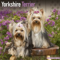 Yorkshire Terrier Wall Calendar 2018 by Avonside