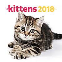 Kittens Calendar 2018 by Presco Group