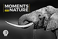 Moments of the Nature Calendar 2018 by Presco Group