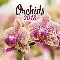 Orchids Calendar 2018 by Presco Group