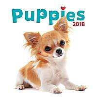 Puppies Calendar 2018 by Presco Group